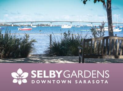 Downtown Sarasota Campus